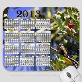 Hummingbird In A State Of Rest 2013 Calendar Mousepad