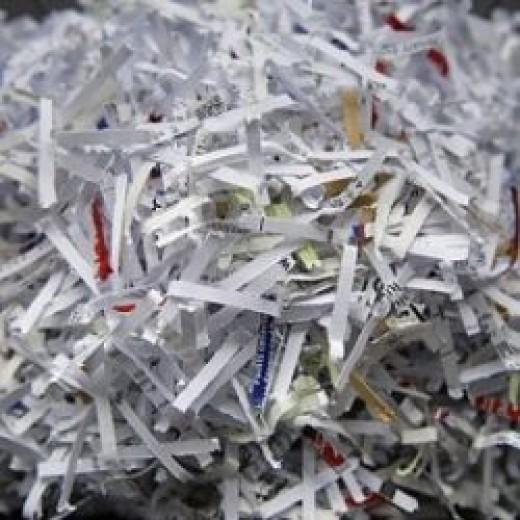 Shredded Paper Bedding