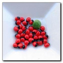 African lucky beans