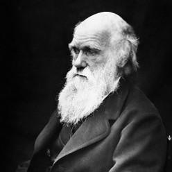 Celebrate Darwin Day