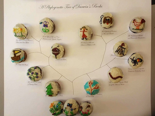 """A Phylogenetic Tree of Darwin's Books"" made up of cupcakes http://www.flickr.com/photos/beatymuseum/5426175882/ the Beaty Biodiversity Museum"