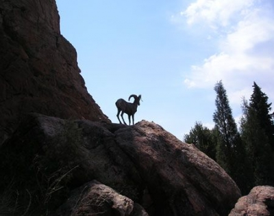 Scenes from Glen Eyrie Conference & Retreat Center in Coloaro Springs