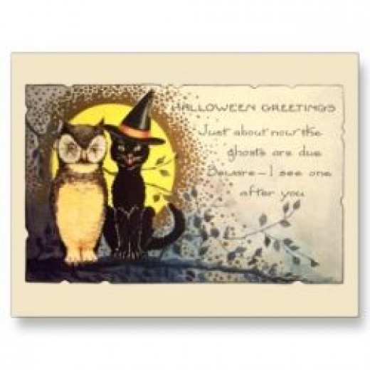 Cat And Owl Postcard available at Zazzle.com
