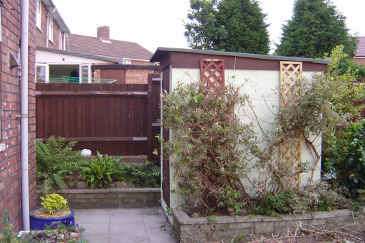 Small brick built shed in garden by house