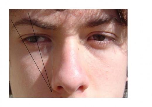 Eyebrow map