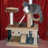 Strengthen and Extend your Cat Tree with a Cubbyhole