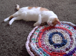 Rag Rug with Cat