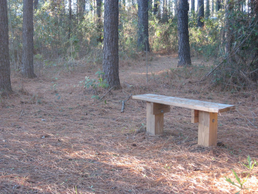 Treated Lumber Bench