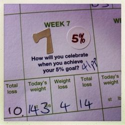 My Weight Watchers Progress