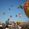 Reno Festivals