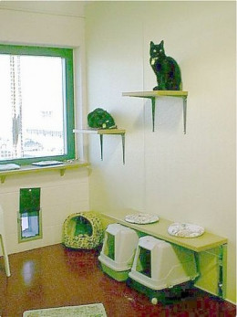 Cat Room Ideas by mi2starsfan