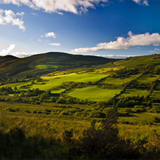 Irelands Forty Shades of Green