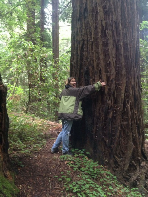 We hug trees together.