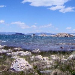 All About Mono Lake