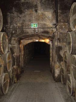 Chateau Otard Vaults