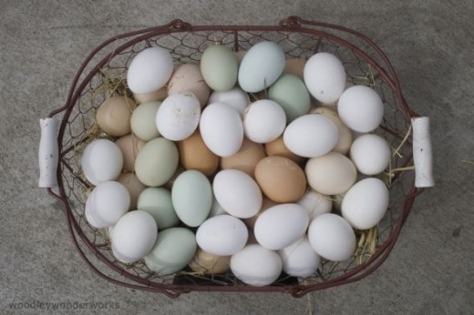 Basket full of Eggs by woodleywonderworks