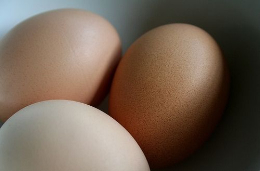 Chicken Eggs Brown by MinivanNinja