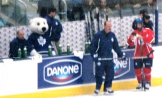 Carlton (the bear) on the bench