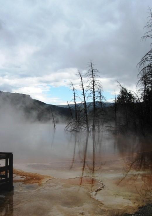 The dream-like Grand Prismatic Spring area