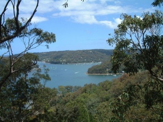 A view from Pittwater YHA