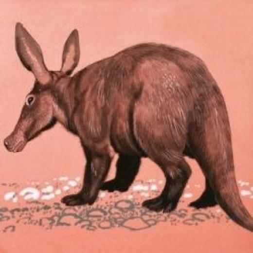 Aardvark Print