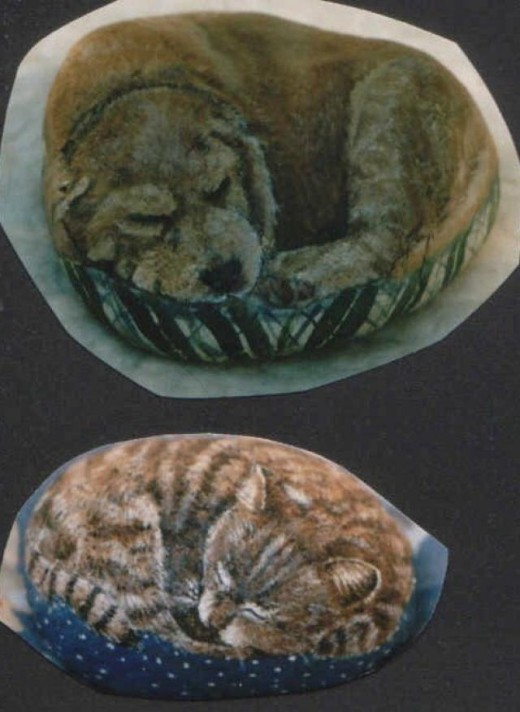 sleeping dog and cat rock