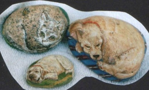 medium sized rocks pets