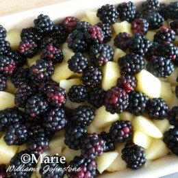 Plump juicy blackberries make wonderful fruits for delicious puddings, drinks and treats.