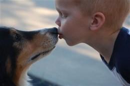 Litlle Boy Kissing a Dog
