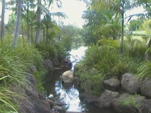 Rochedale Park brook