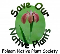 Folsom, Louisiana Native Plant Society