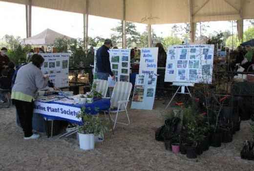 Folsom Native Plant Booth