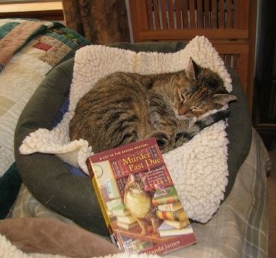 Curl Up With a Good Book!