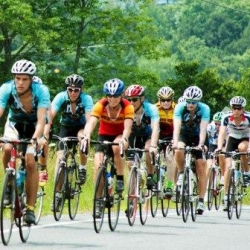 Bicycle riders racing