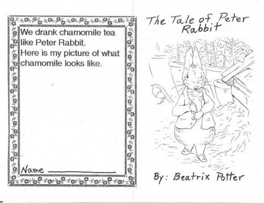 Peter Rabbit Unit Booklet Cover