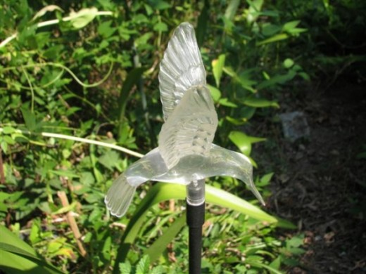 Hummingbird Solar Light by day