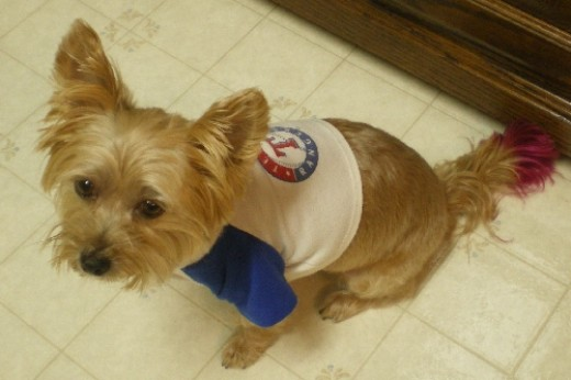 Mollee is a Texas Rangers fan!