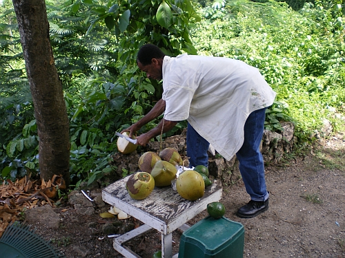 The man who introduced us to coconut water.
