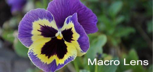 Macro Lens