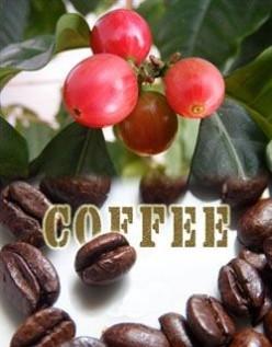 Coffee, Coffee, The Beauty of Coffee