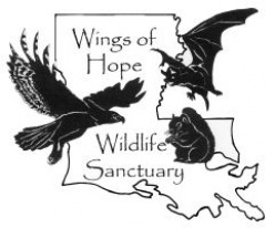 Wings of Hope Wildlife Sanctuary