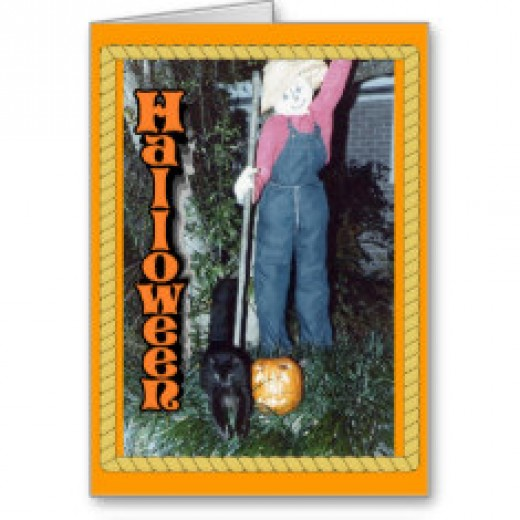 Zee, our black cat leaps away from the scarecrow and jack-o-lantern.