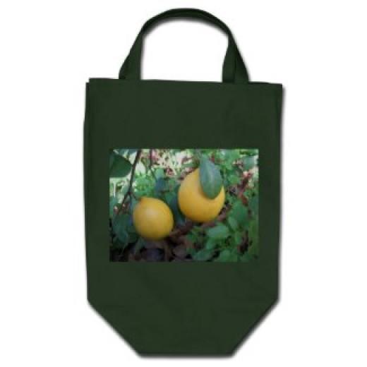 Many types of citrus ripens in October and November including Meyer lemons, satsumas and kumquats.