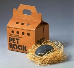 The Pet Rock - Classic Invention of the 1970s