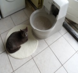 Cat Genie 120 - Self Cleaning Litter Box