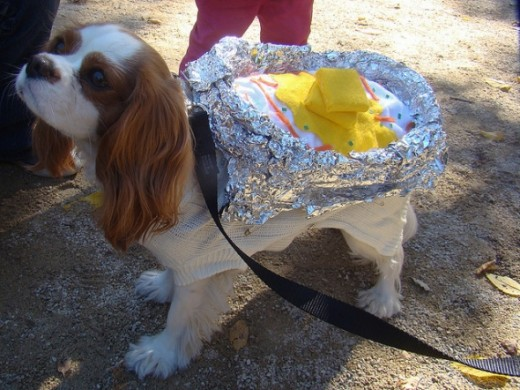 Baked Potato Puppy