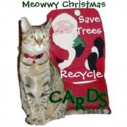 Christmas Cards for Cat Lovers