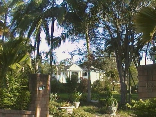 Sunnybank House with palm tree garden