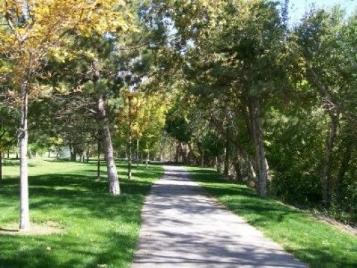 Enjoying Nature On A Walk: A fabulous benefit for the soul