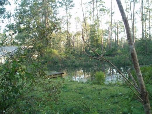 After Hurricane Katrina